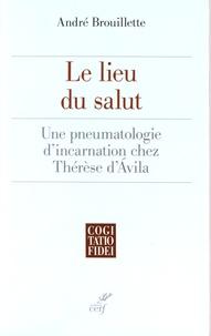 Ucareoutplacement.be Le lieu du salut - Une pneumatologie d'incarnation chez Thérèse d'Avila Image