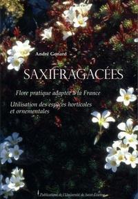 Rhonealpesinfo.fr Saxifragacées - Flore pratique adaptée à la France Utilisation des espèces horticoles et ornementales Image