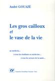 André Gouazé - Les gros cailloux et le vase de la vie - Au médecin... A tous les étudiants en médecine... A tous les acteurs de la santé.