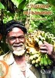 André Lassoudière - L'histoire du bananier.