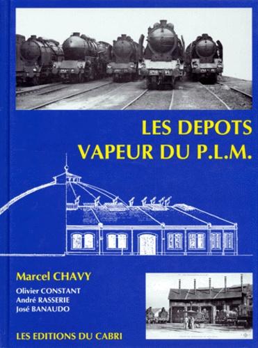 André Rasserie et José Banaudo - Les dépôts vapeur du PLM - Régions Sud-Est et Méditerranée SNCF.