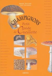 Deedr.fr Champignons - Petit guide de cueillette Image