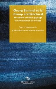 Andrea Borsari et Manola Antonioli - Georg Simmel et le champ architectural - Sociabilité urbaine, paysage et esthétisation du monde.