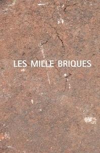 Andréa Eichenberger et Isabelle Marseille - Les mille briques.