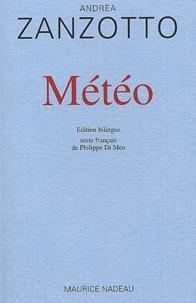 Andrea Zanzotto - .
