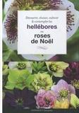 Andrew Mikolajski - Hellébores - Roses de Noël.