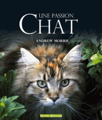 Andrew Morris - Chat, une passion.