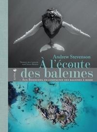Andrew Stevenson - A l'écoute des baleines - Aux Bermudes, en compagnie des baleines à bosse.