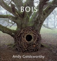 Andy Goldsworthy - Bois.