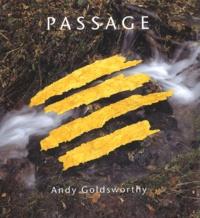 Andy Goldsworthy - Passage.