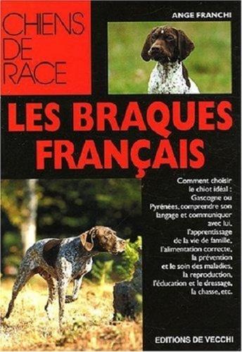 Braque Français, Type Pyrénées