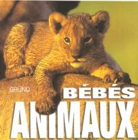 Angela Serena Ildos - Bébés animaux.
