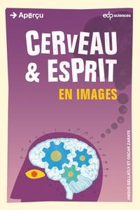 Angus Gellatly - Cerveau & esprit en images.