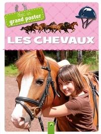 Accentsonline.fr Les chevaux - Avec un grand poster Image
