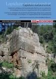 Anna Gutiérrez Garcia-M et Pierre Rouillard - Lapidum natura restat - Carrières antiques de la péninsule Ibérique dans leur contexte (chronologie, techniques et organisation de l'exploitation).