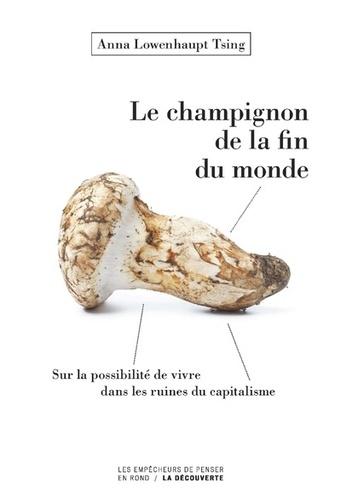 Le champignon de la fin du monde. Sur la possibilité de vivre dans les ruines du capitalisme
