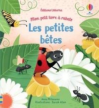 Anna Milbourne et Sarah Allen - Les petites bêtes.