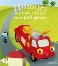 Anna Piot et Raphaële Glaux - Histoires de véhicules à lire avec mon petit garçon.