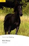 Anna Sewell - Black Beauty. 1 CD audio MP3
