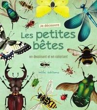 Anne Baudier et Rebecca Romeo - Je découvre les petites bêtes en dessinant et en coloriant.
