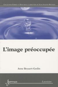 Anne Beyaert-Geslin - L'image préoccupée.