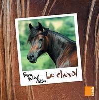 Anne-Claire Aubron - Le cheval.