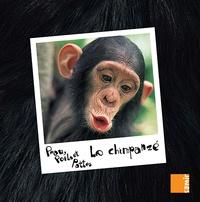 Anne-Claire Aubron - Le chimpanzé.