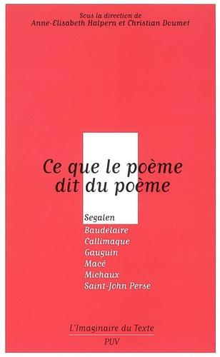 Anne-Elisabeth Halpern et Christian Doumet - Ce que le poème dit du poème - Segalen, Baudelaire, Callimaque, Gauguin, Macé, Michaux, Saint-John Perse.