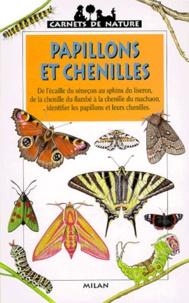 Cjtaboo.be Papillons et chenilles Image
