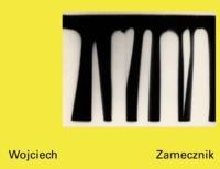 Wojciech Zamecznik- La photographie sous toutes ses formes - Anne Lacoste | Showmesound.org