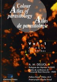 Atlas de parasitologie - Volume 1, Les amibes.pdf
