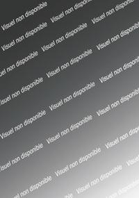 Anne-Marie Desplat-Duc - Marie-Antoinette et ses soeurs - Tome 2, Premiers bals.
