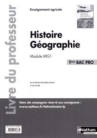 Anne-Marie Lelorrain et Louis Larcade - Histoire Géographie Tle Bac Pro Module MG1 - Livre du professeur.
