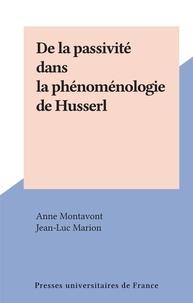Anne Montavont et Jean-Luc Marion - De la passivité dans la phénoménologie de Husserl.
