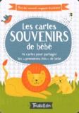 """Anne Passchier et Holly Brook-Piper - Les cartes souvenirs de bébé - 46 cartes pour partager les """"premières fois"""" de bébé."""