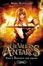 Anne Robillard - Les chevaliers d'Antarès Tome 1 : Descente aux enfers.