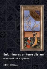 Enluminures en terre d'Islam- Entre abstraction et figuration - Annie Vernay-Nouri |