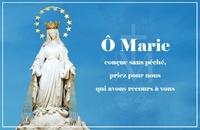 Anonyme - Carte Notre-Dame de la médaille miraculeuse par lot de 20.
