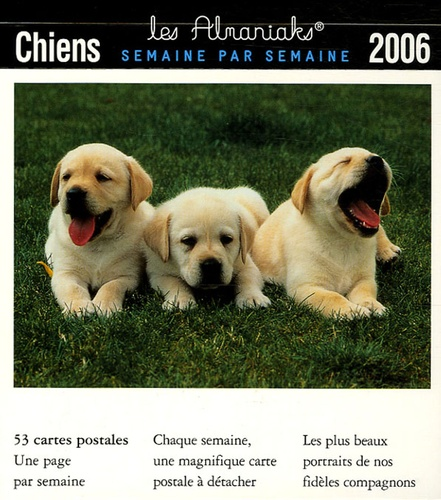 Anonyme - Chiens - 53 Cartes postales.