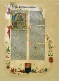Anonyme - La Bible : A Biblia - Edition bilingue français-corse.