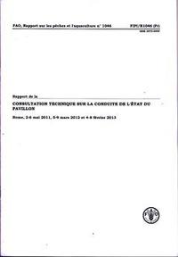 Deedr.fr Rapport de la consultation technique sur la conduite de l'état du pavillon - Rome, 2-6 mai 2011, 5-9 mars 2012 et 4-8 février 2013 Image