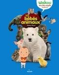 Anthony Hecquet - Les bébés animaux.