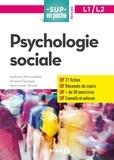 Anthony Piermattéo et Jérôme Guegan - Psychologie sociale L1/L2.
