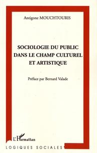 Antigone Mouchtouris - Sociologie du public dans le champ culturel et artistique.