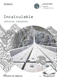 Antoine Cantenot - Incalculable.