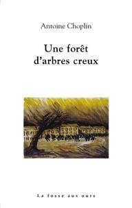 Antoine Choplin - Une forêt d'arbres creux.