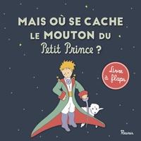 Histoiresdenlire.be Mais où se cache le mouton du Petit Prince ? Image