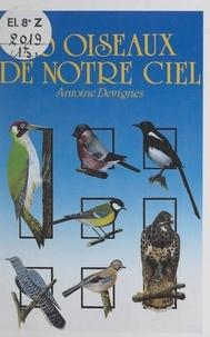 Antoine Devignes et  Aarons - 30 oiseaux de notre ciel.