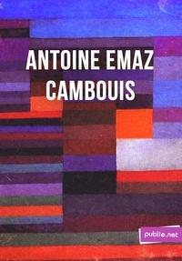 """Antoine Emaz - Cambouis - """"""""c'est mon travail, strictement, c'est-à-dire ce qui a pu passer de vivre en mots""""""""."""