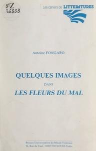 Antoine Fongaro - Quelques images dans Les Fleurs du mal.